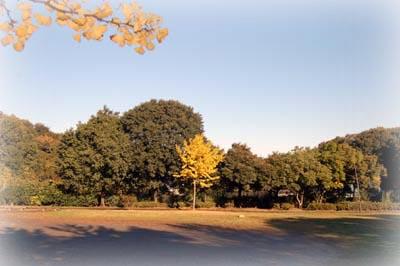 2007_ityo2.jpg